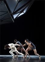 jardin-infinito-ballet-teatro-real-madrid-2010.jpg